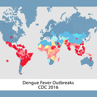dengue-fever-s3-outbreaks-cdc-map-2016