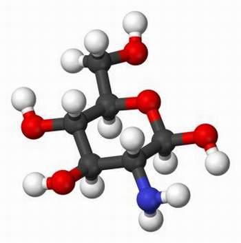 glucosamin-dung-sao-cho-dung.jpg